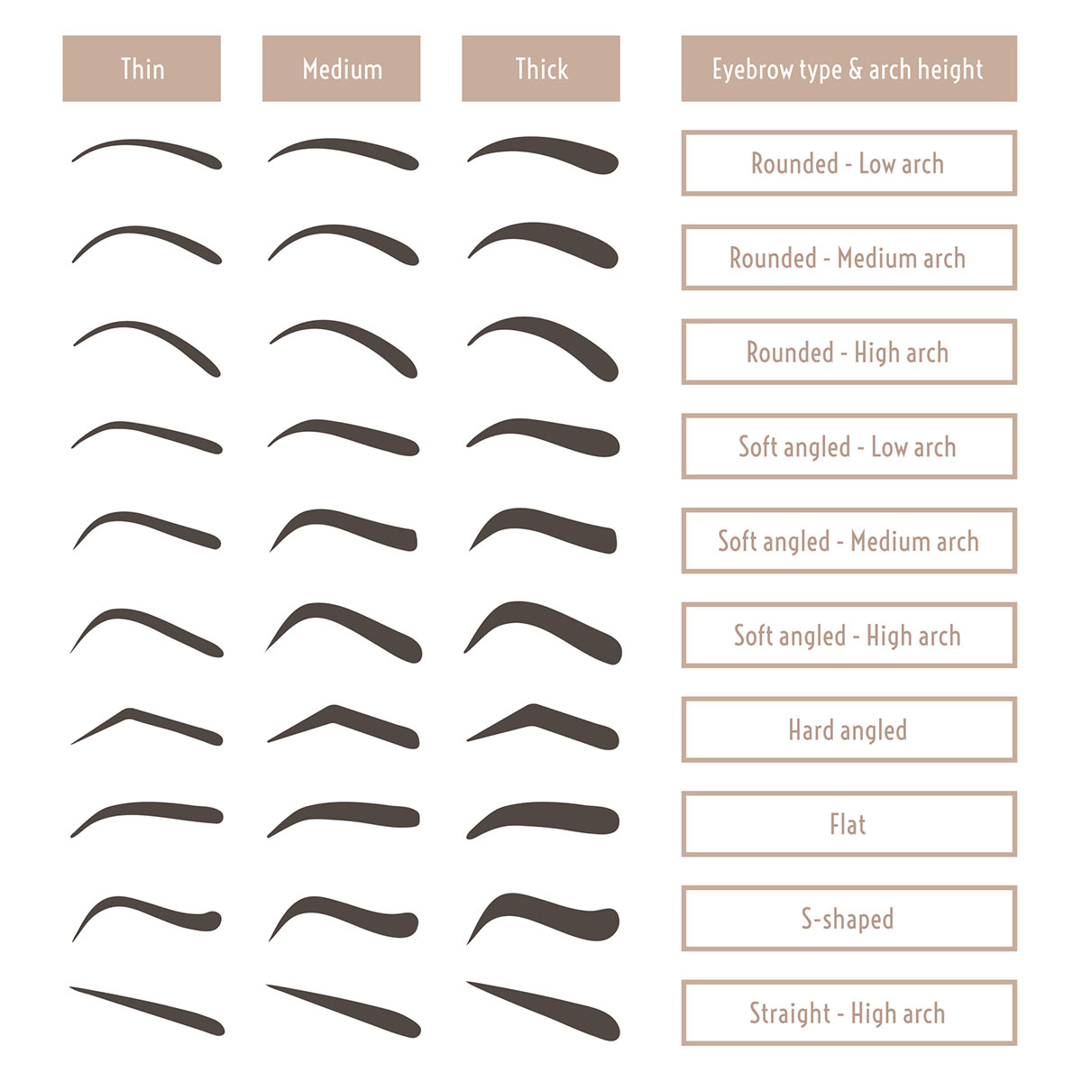 Different eyebrow shapes